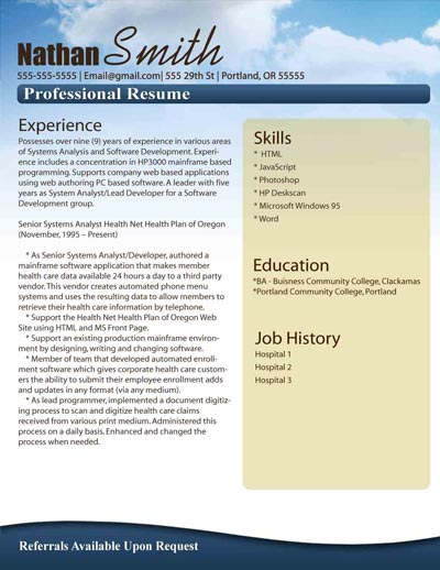 Free Resume Template 6  Professional Resume Templates Microsoft Word